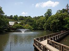 井の頭公園(約3.4km/自転車18分)